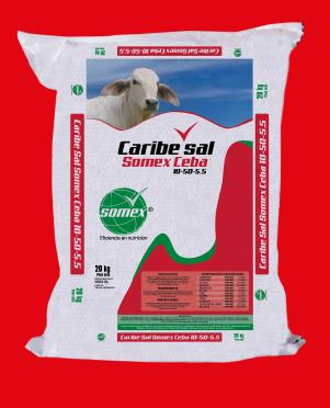 caribe-sal-somex-10-50-5.5